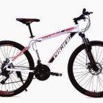 Pacific Bike Tranzline 300