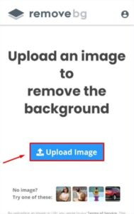 aplikasi Remove BG Apk